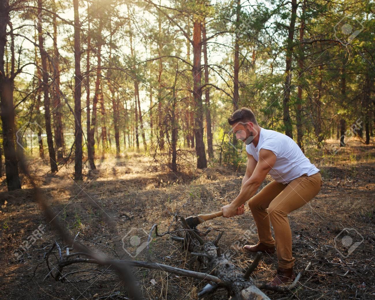 abattage arbre 62
