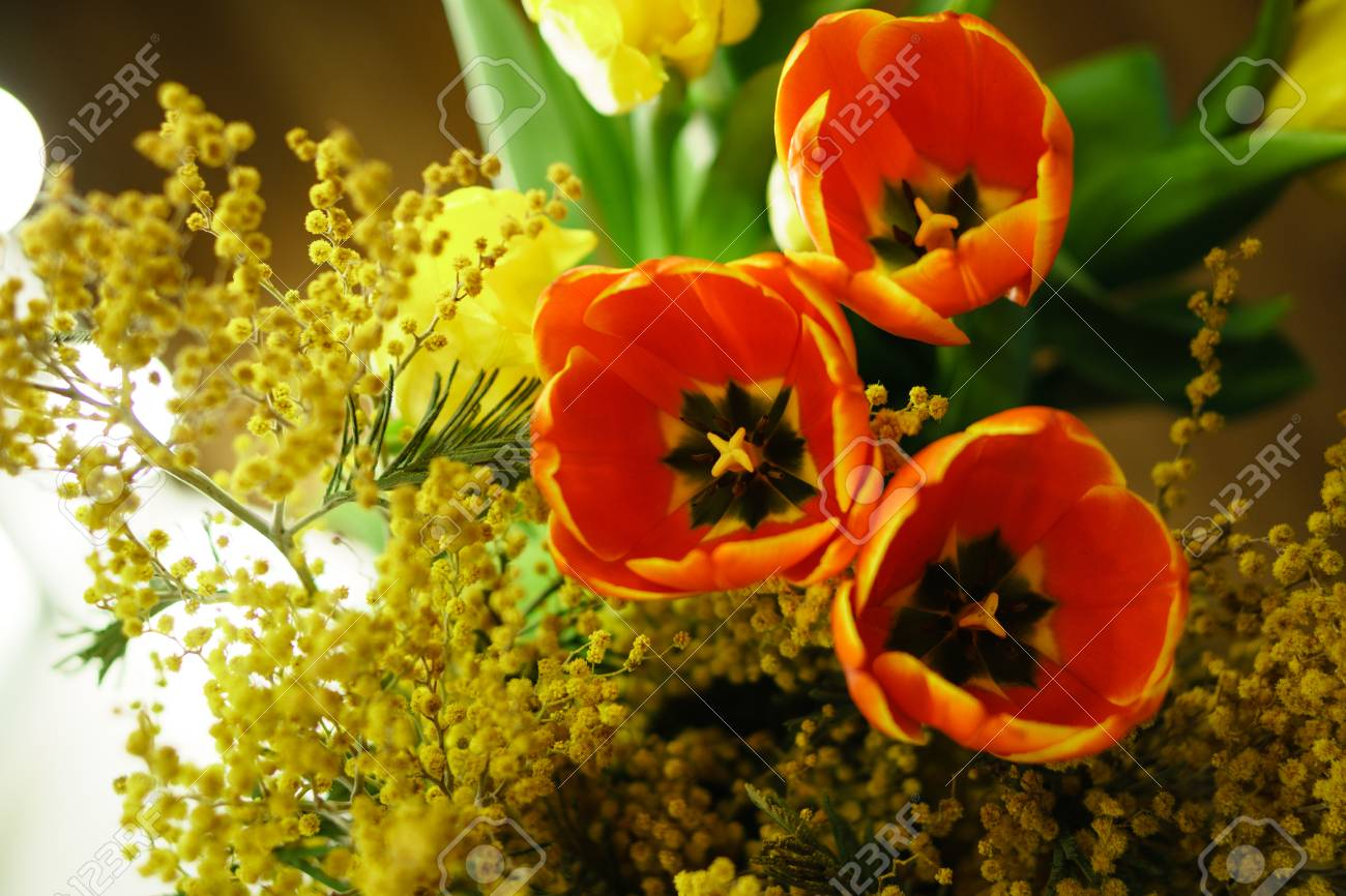 Flower Bouquet Of Yellow And Red Tulips And Yellow Mimosa Open