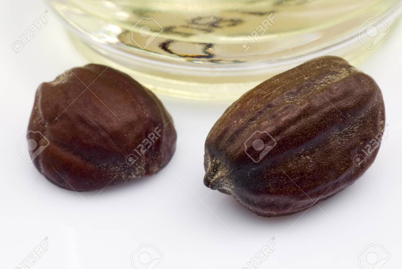 Jojoba seeds Simmondsia chinensis on withe beckground - 30107632