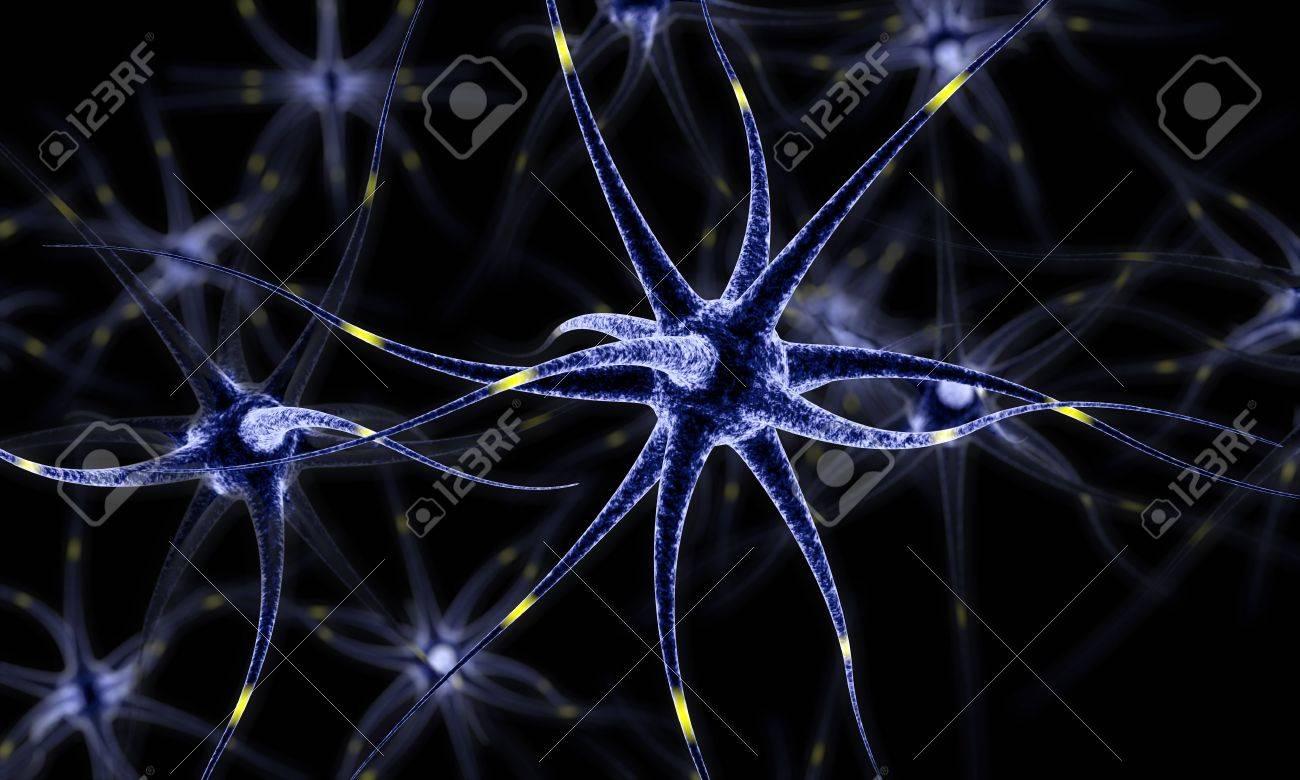 Red Neuronal, Células Cerebrales, Sistema Nervioso Humano, Neuronas ...
