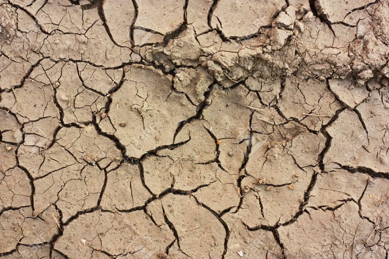 Hohe Auflosung Dry Boden Texturen Lizenzfreie Fotos Bilder Und