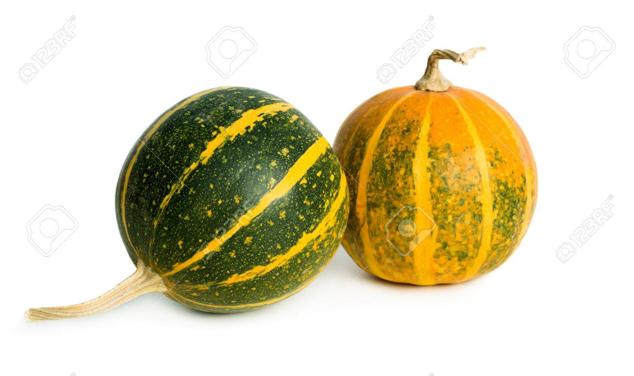 green and orange small pumpkins isolated on white background stock