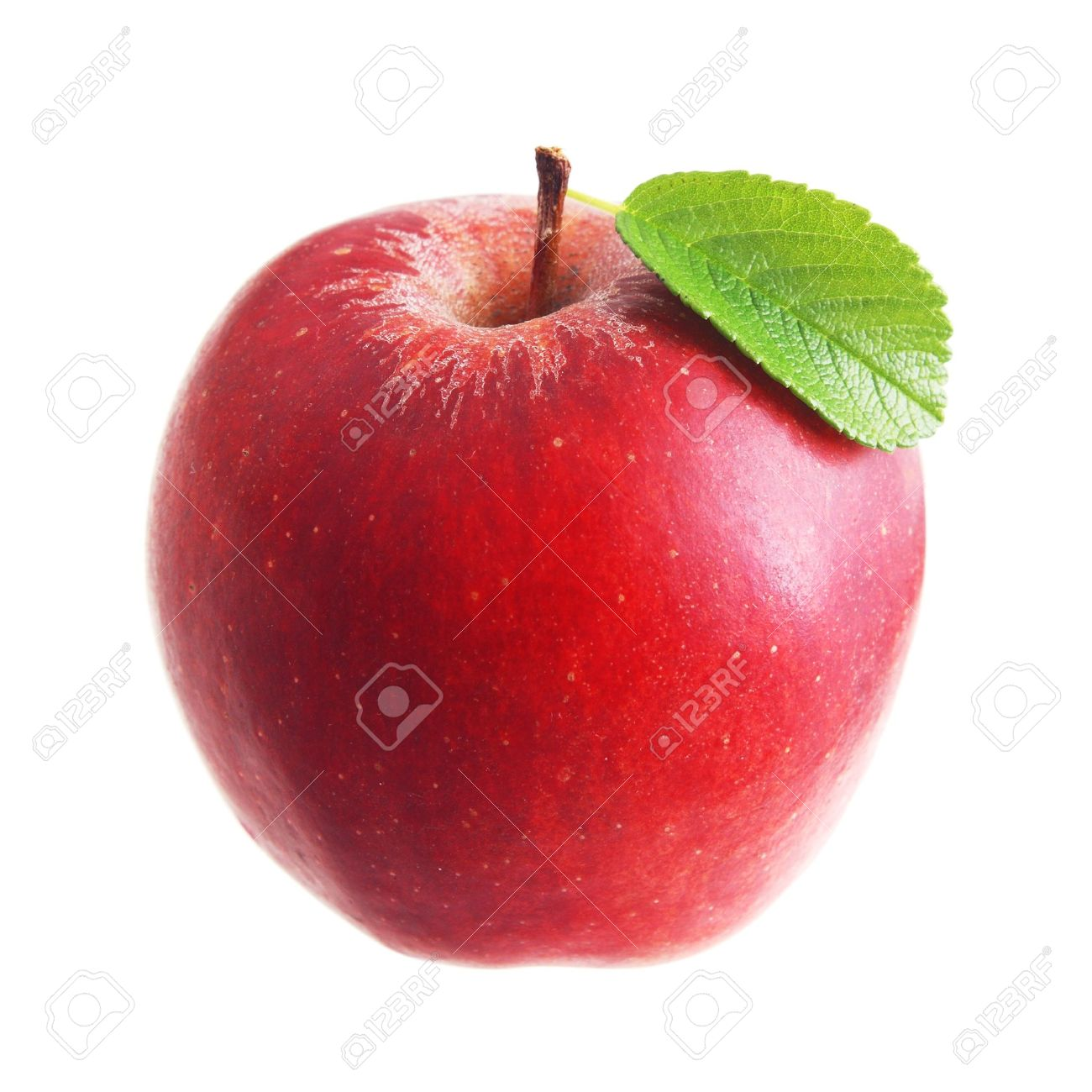 Red apple with leaf isolated Stock Photo - 20584840