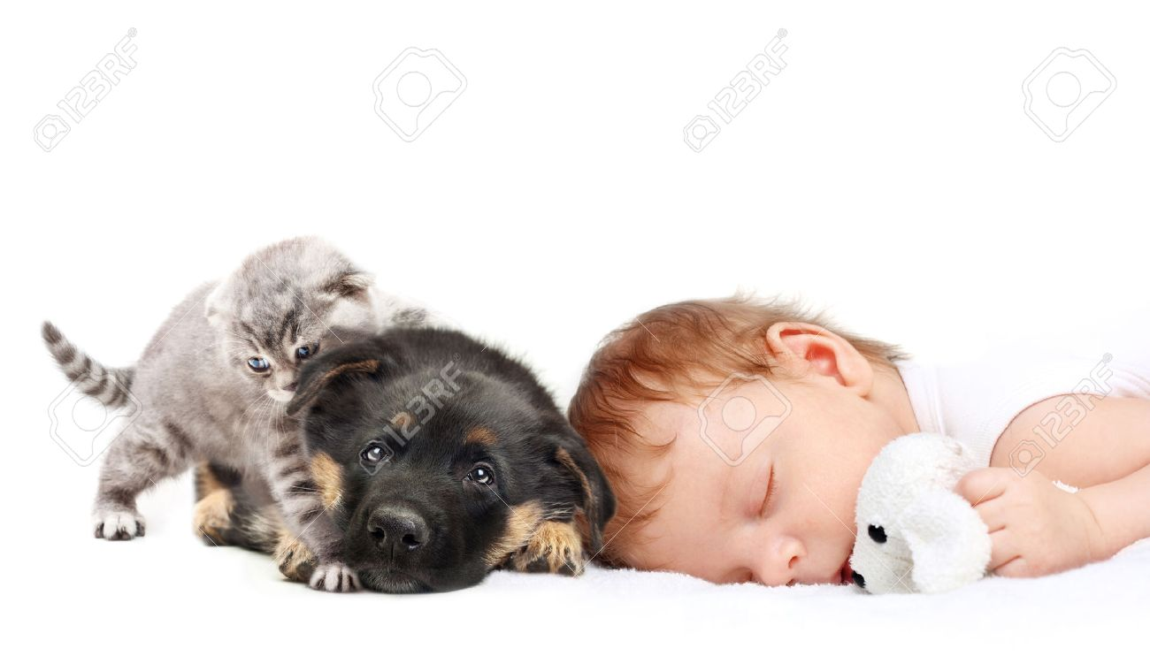 sleeping baby boy with toy dog puppy and kitten stock photo
