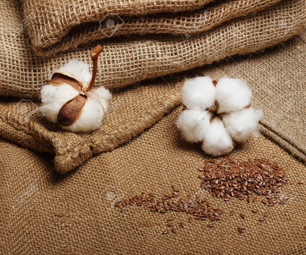 Cotton plant flower with flax seeds on hessian sack textile background - 61544485