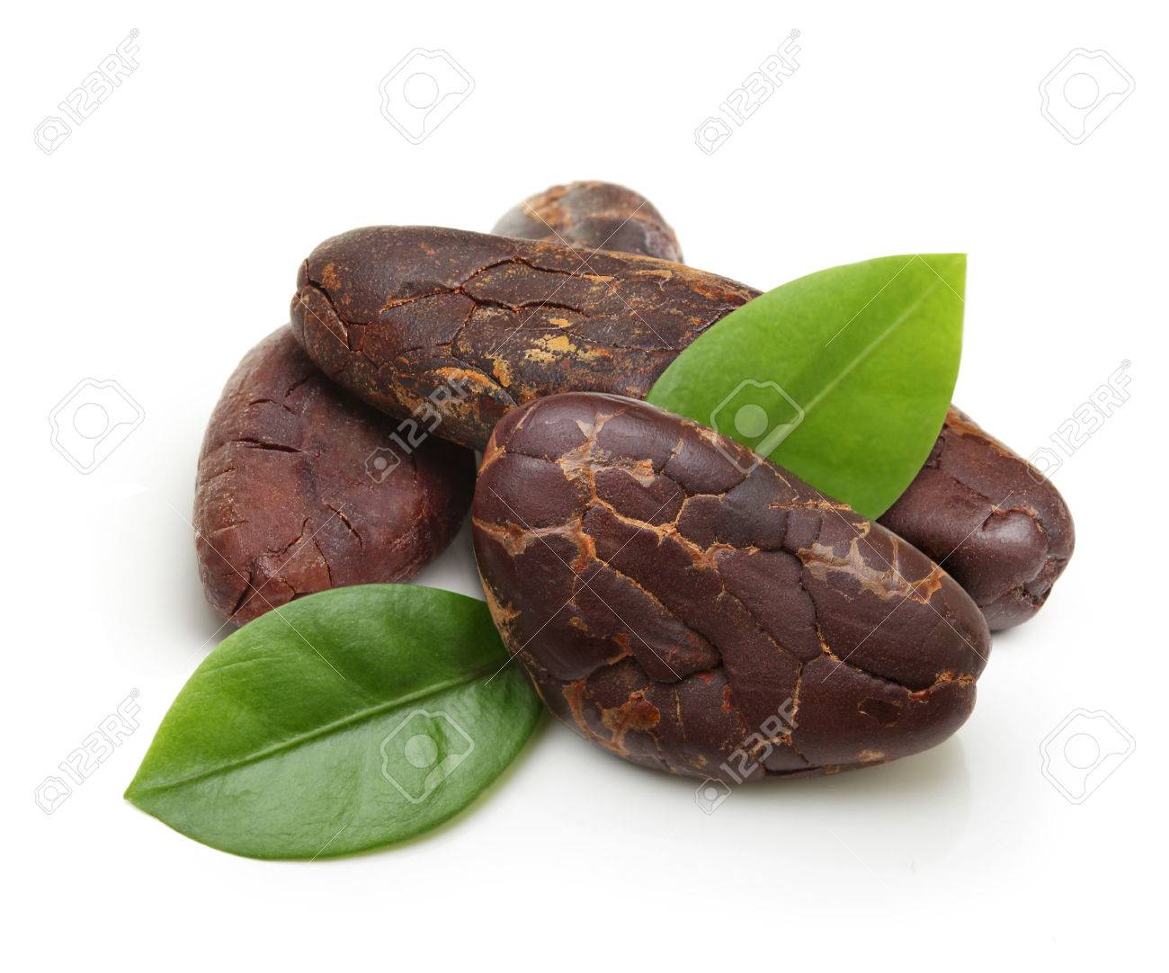 Cacao beans isolated on white background - 61262756