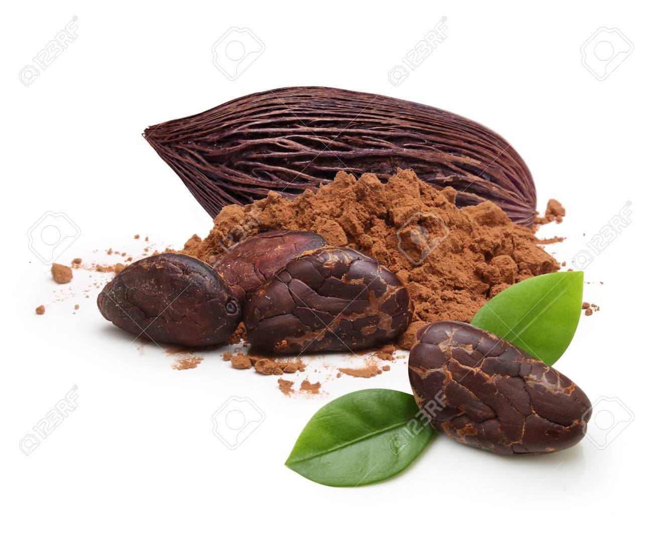 Cacao beans and powder isolated on white background - 63994902