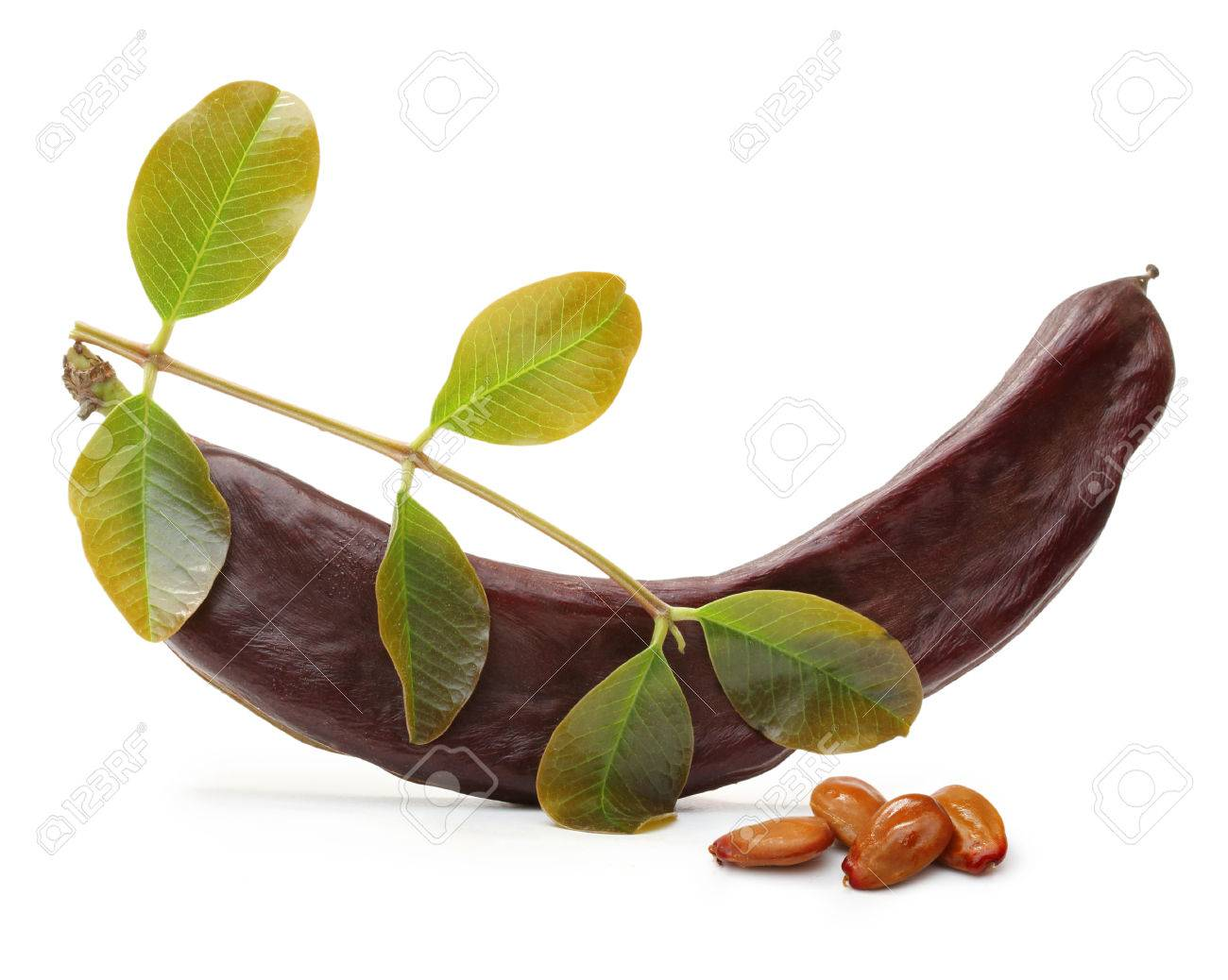Carob pod and seeds isolated on a white background - 61281433