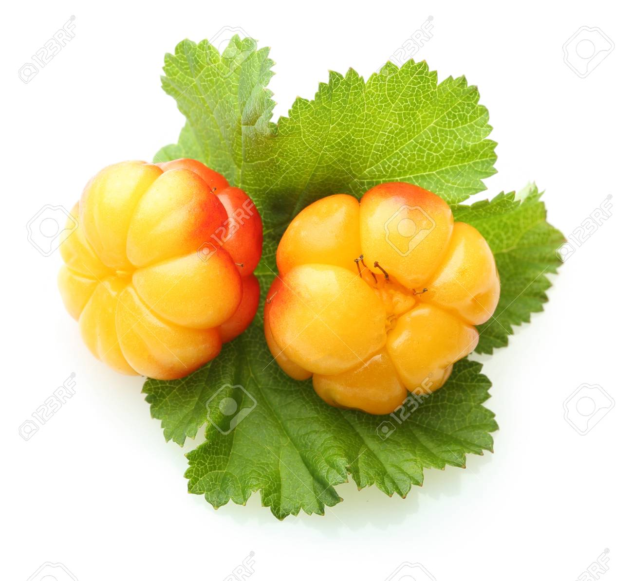 What is useful cloudberry (berry) 56