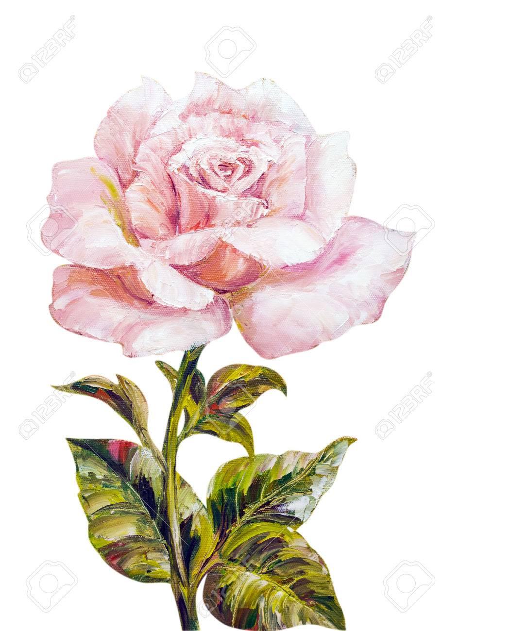 Belle Rose Peinture A L Huile Sur Toile Banque D Images Et Photos Libres De Droits Image 29798263