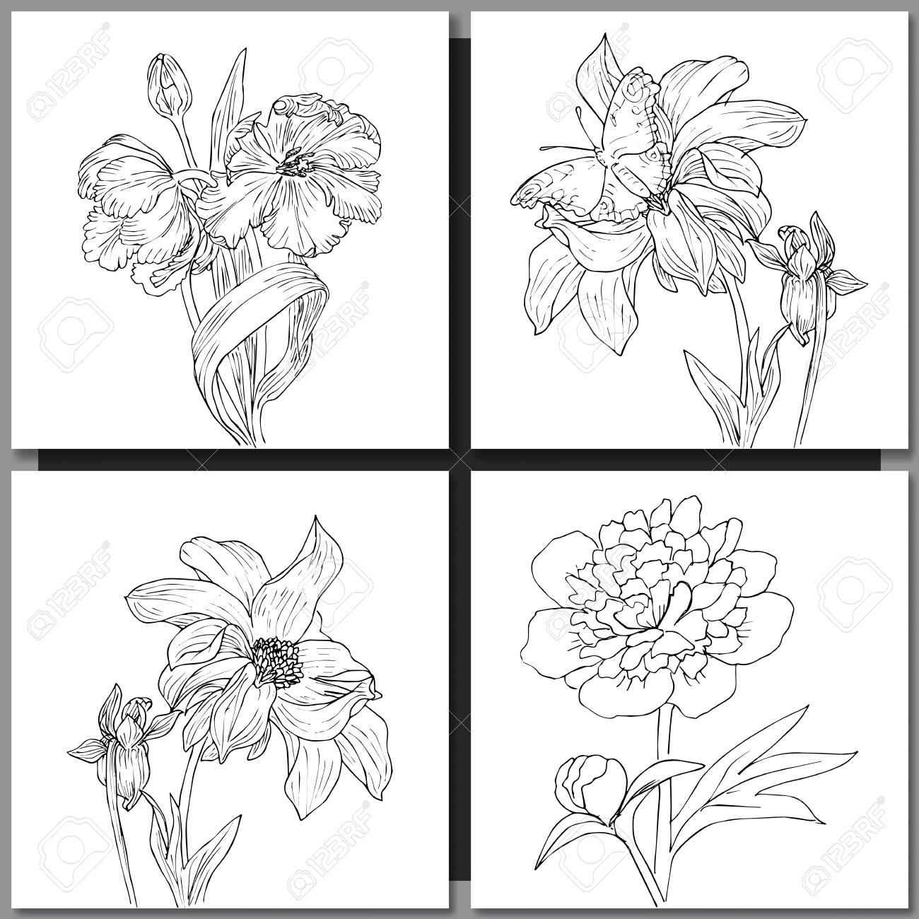 Set Of Hand Drawn Flowers Sketches For Coloring And Greeting ...