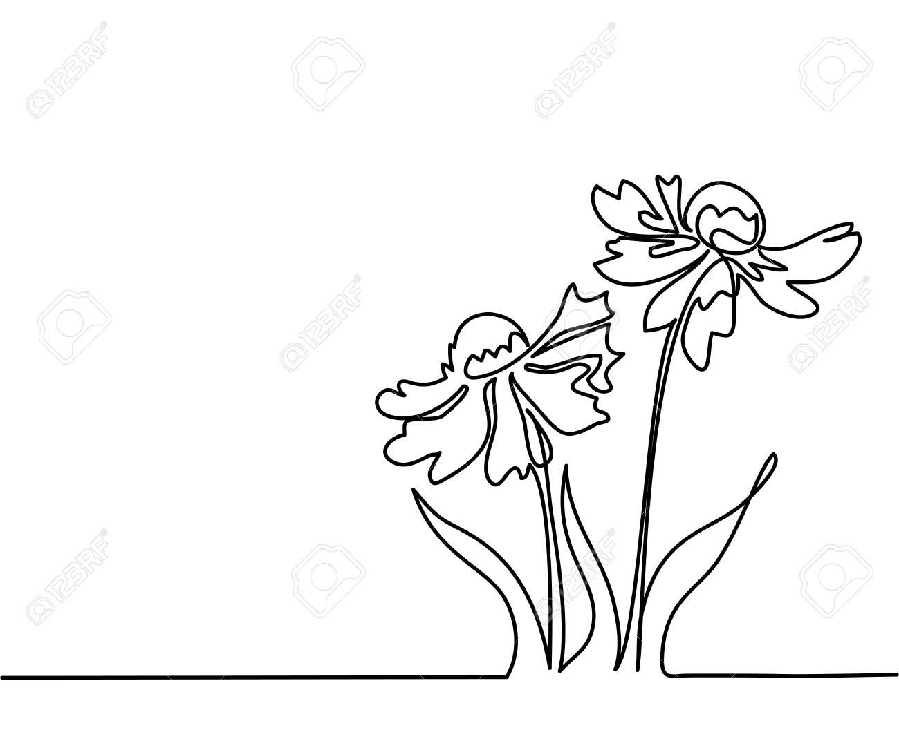 Continuous Line Flower Wiring Diagrams Onan Diagram 6126628 Beautiful Flowers Echinacea Drawing Vector Rh 123rf Com Plant Sun