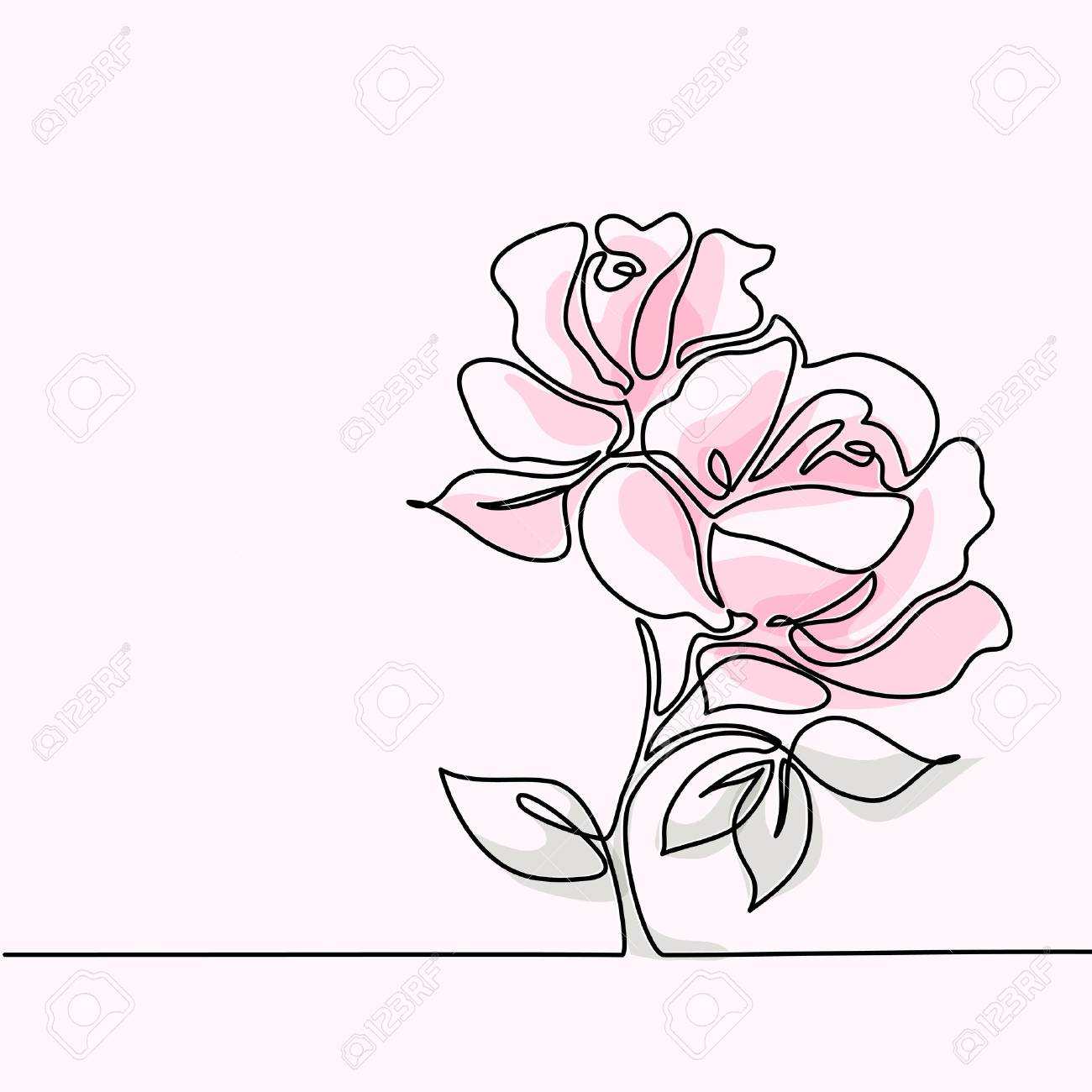 Beautiful Soft Color Pink Rose Flowers Continuous Line Drawing