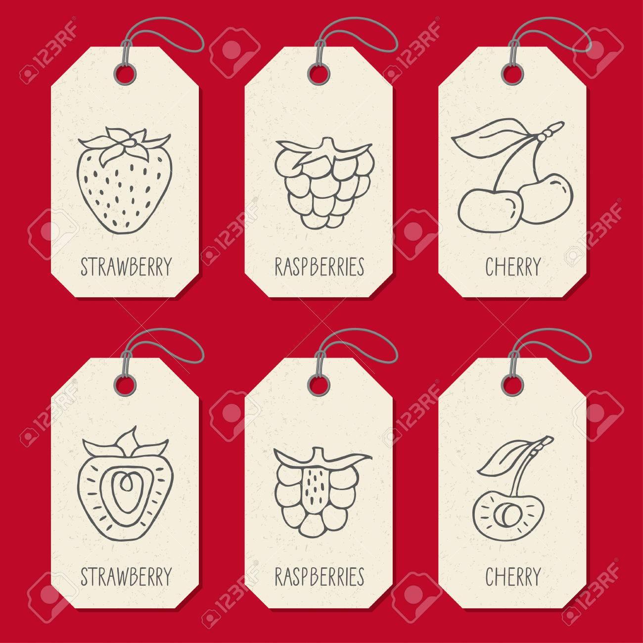 Conjunto De Etiquetas O Plantillas De Etiquetas Con Fruta A Mano ...