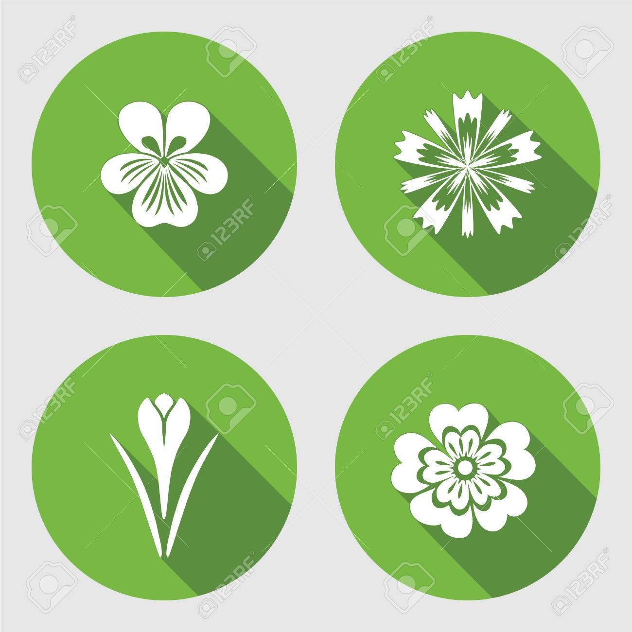 Blumen Gesetzt. Primula, Viola, Blaumohn, Crocus, Safran ...