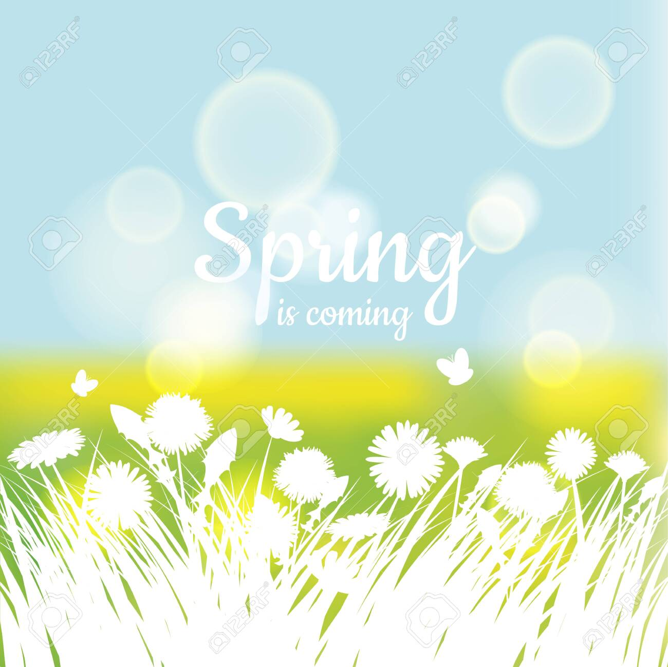 Hello Spring with green grass and chamomile on green background. Spring background. Design for banners, greeting cards, spring sales - 124805555