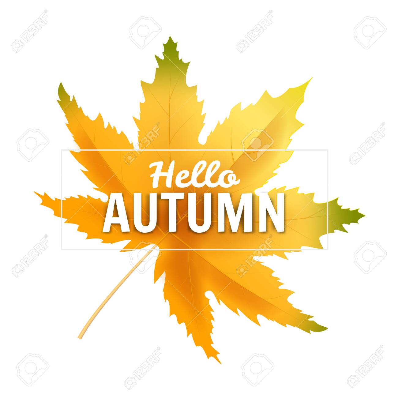 - Banner Hello Autumn Leaf Template Background. Royalty Free