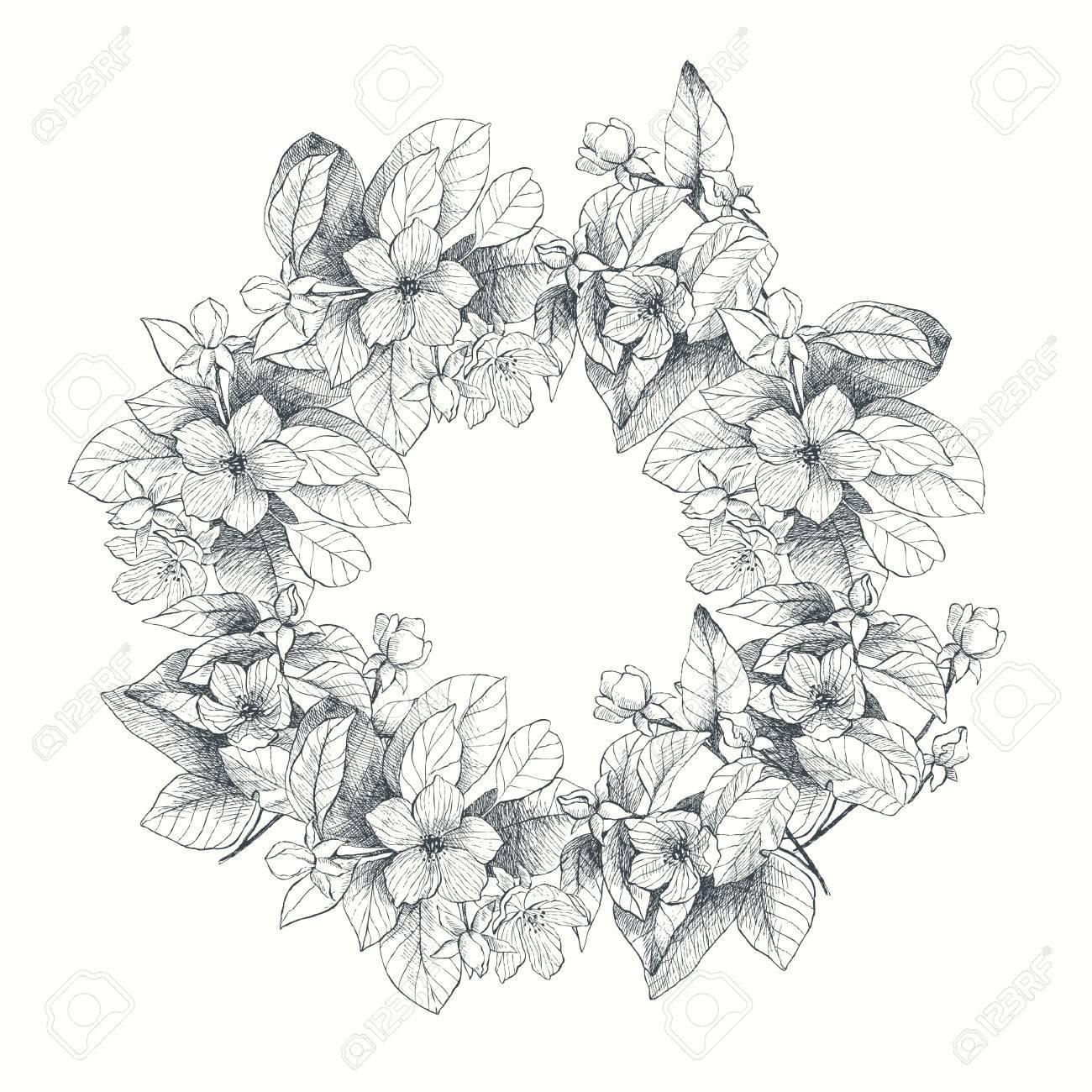 Guirnalda Botanica De Jardin De Flores De Ilustracion Vintage