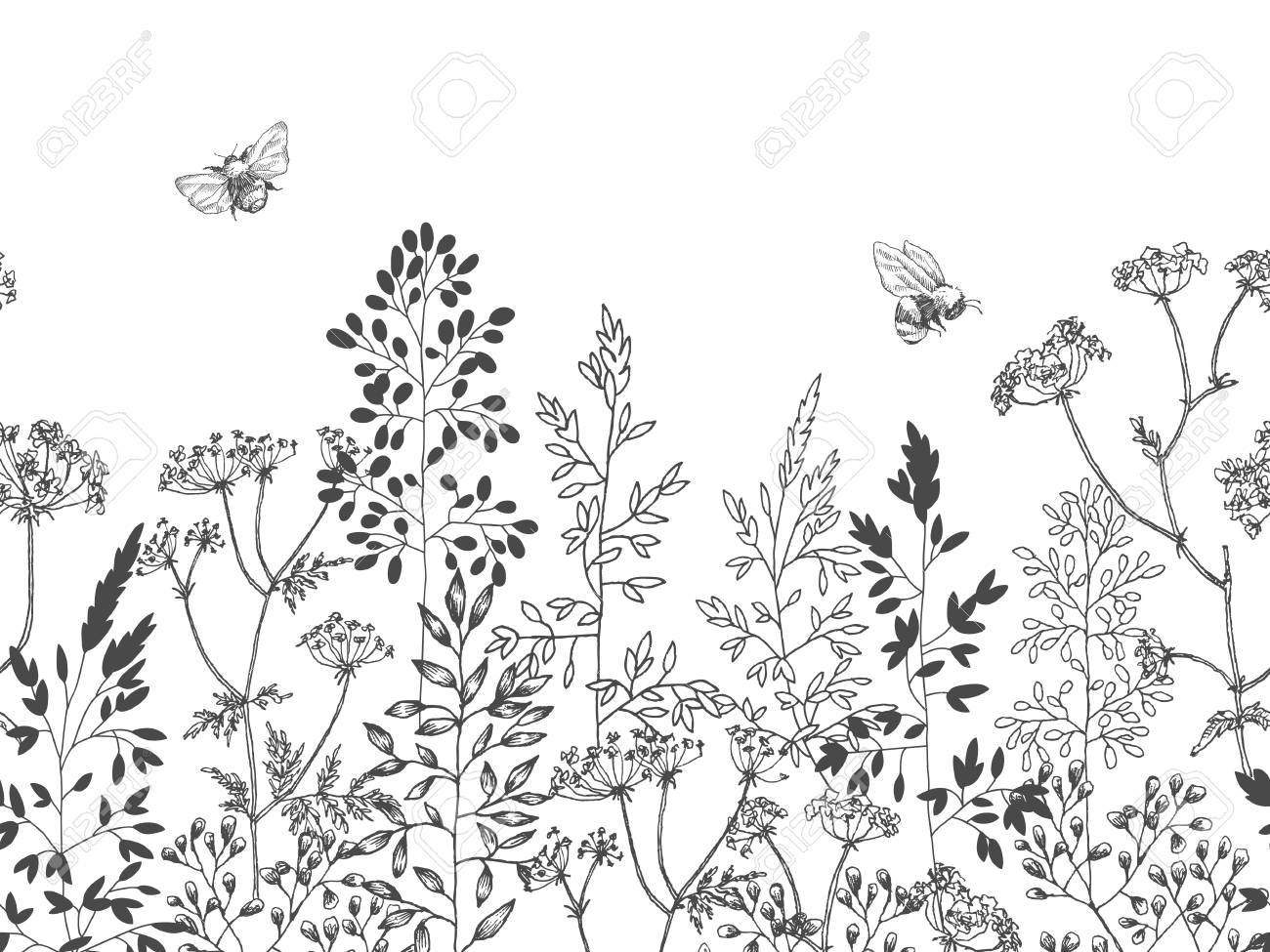 Blooming flower. Set collection. Hand drawn botanical blossom branches on white background. Engraved illustration. - 125867379