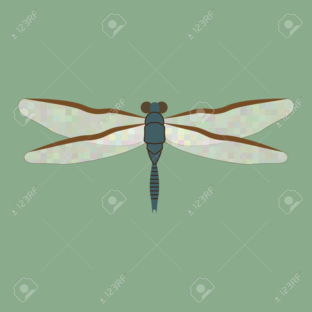 dragonfly sign pattern on green background fashion of summer