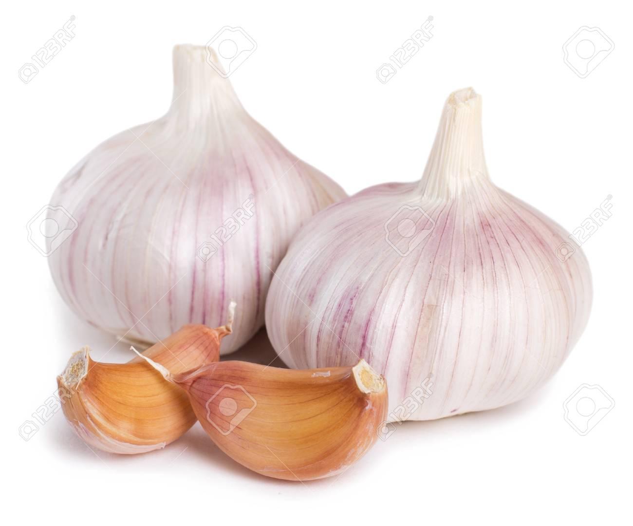 fresh garlic isolated on white background - 125188738