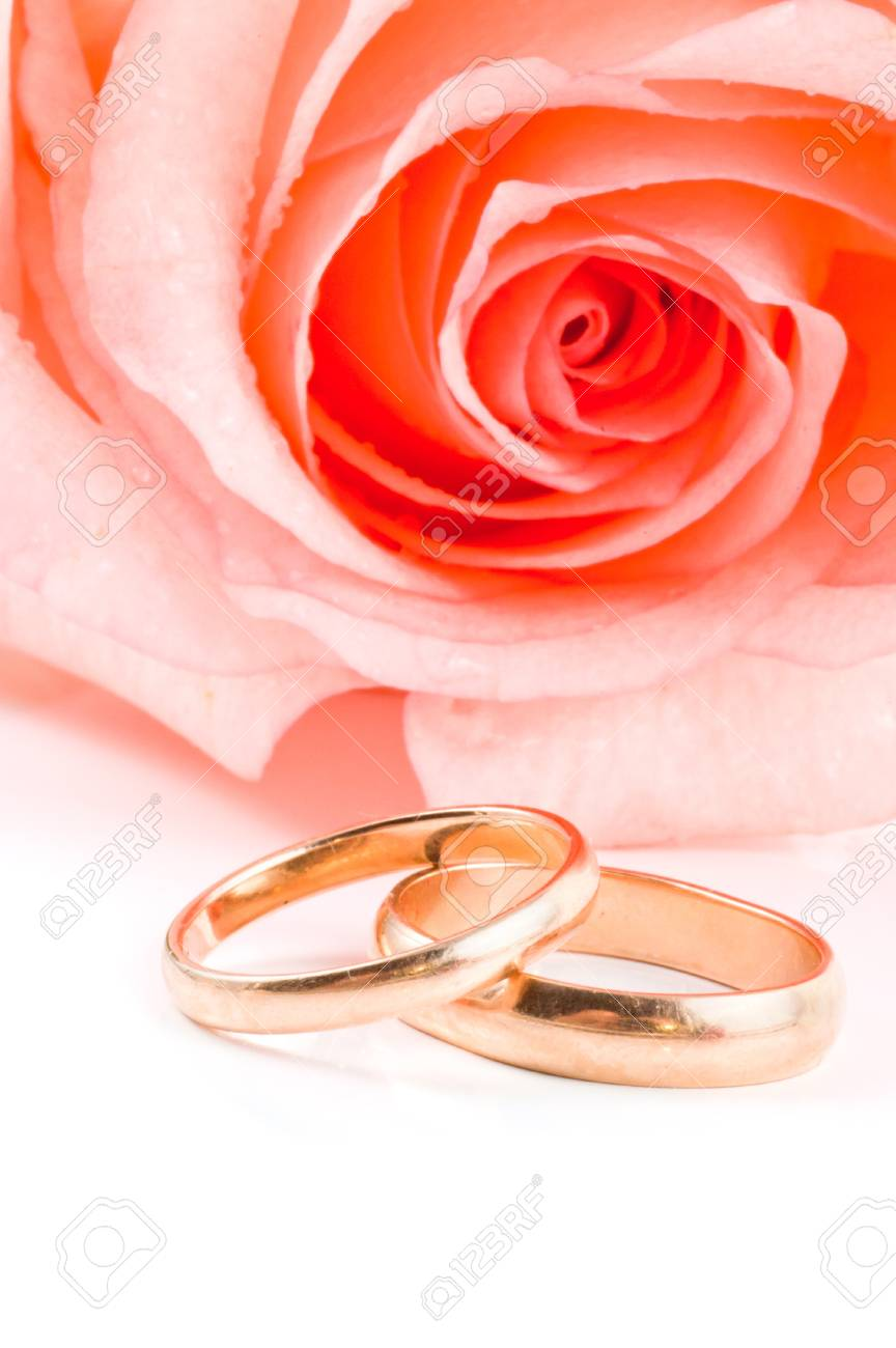 Two Gold Wedding Bands Beside A Pink Rose. Stock Photo, Picture And ...