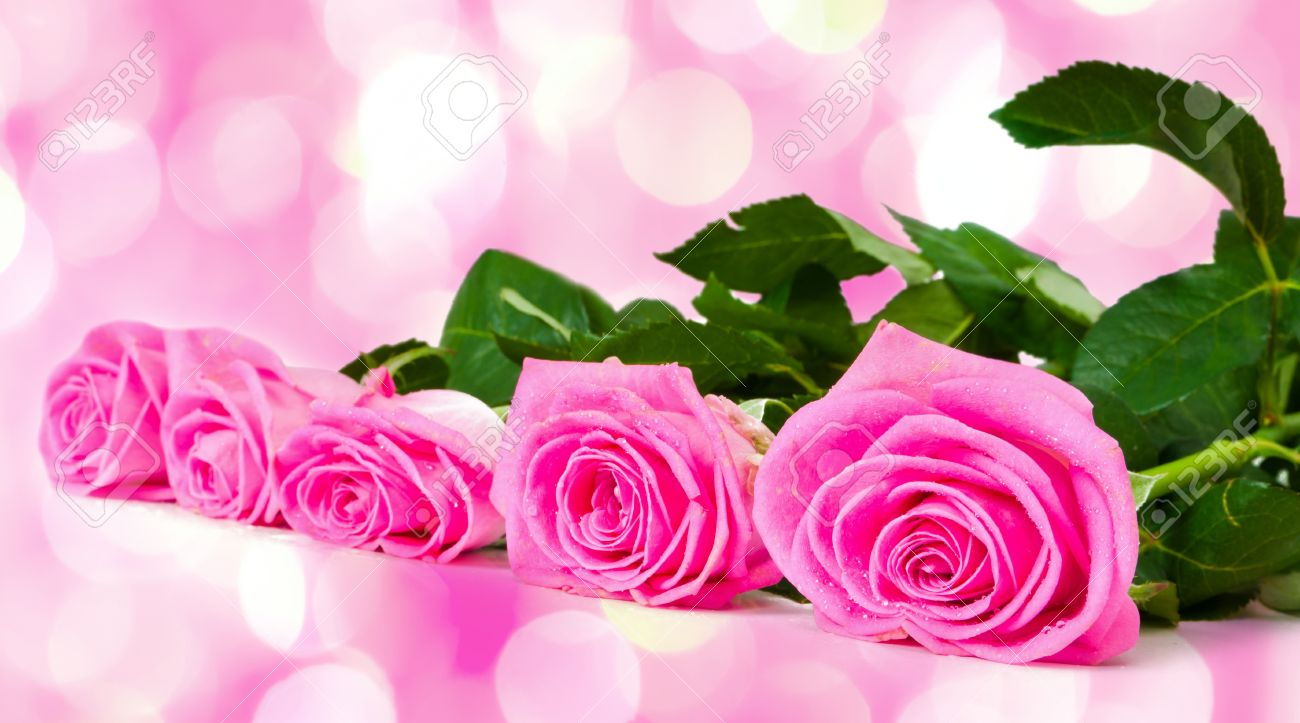 bouquet of beautiful pink roses with pink lights in the background, Beautiful flower