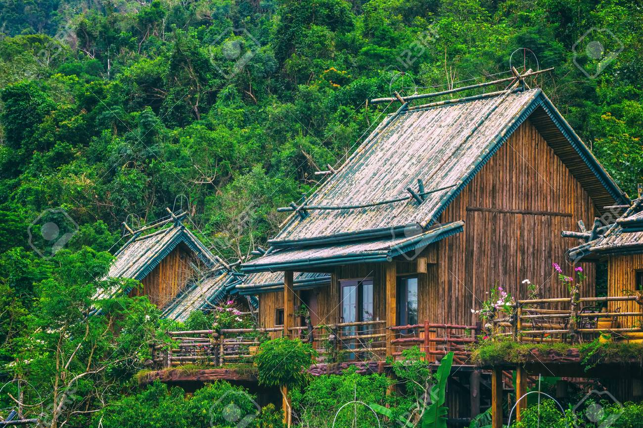 Image result for house in the rainforest