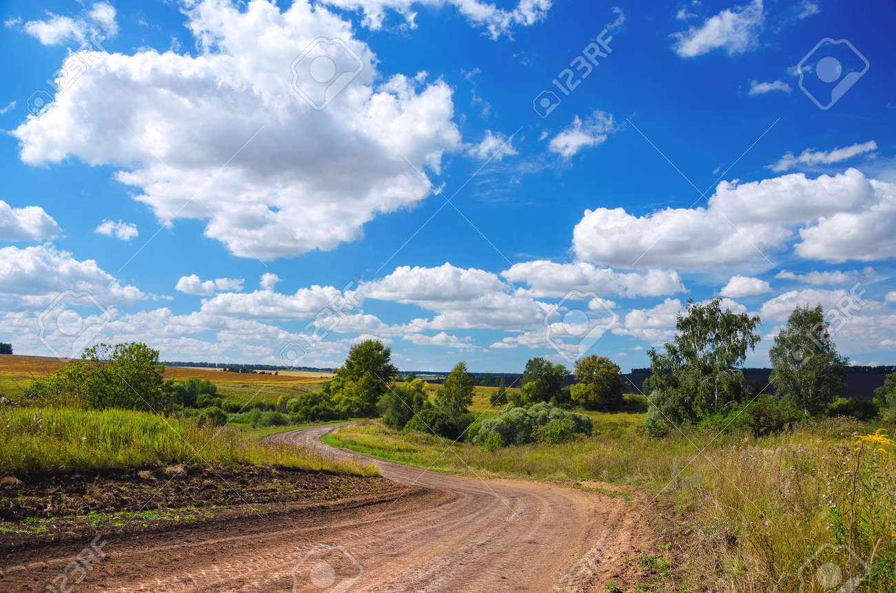 Sunny summer rural landscape with dirt country road and green trees. - 167523902