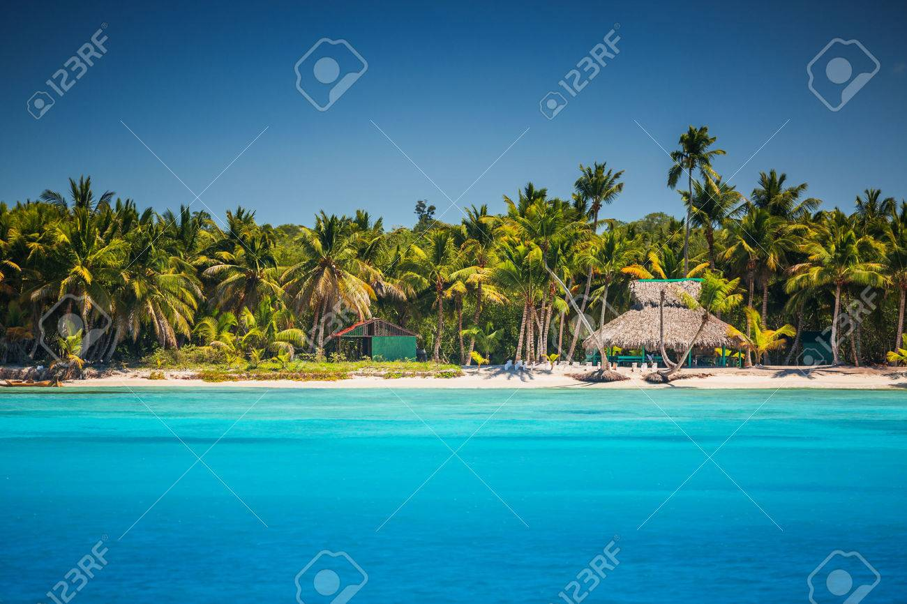 caribbean wild beach punta cana stock photo picture and royalty