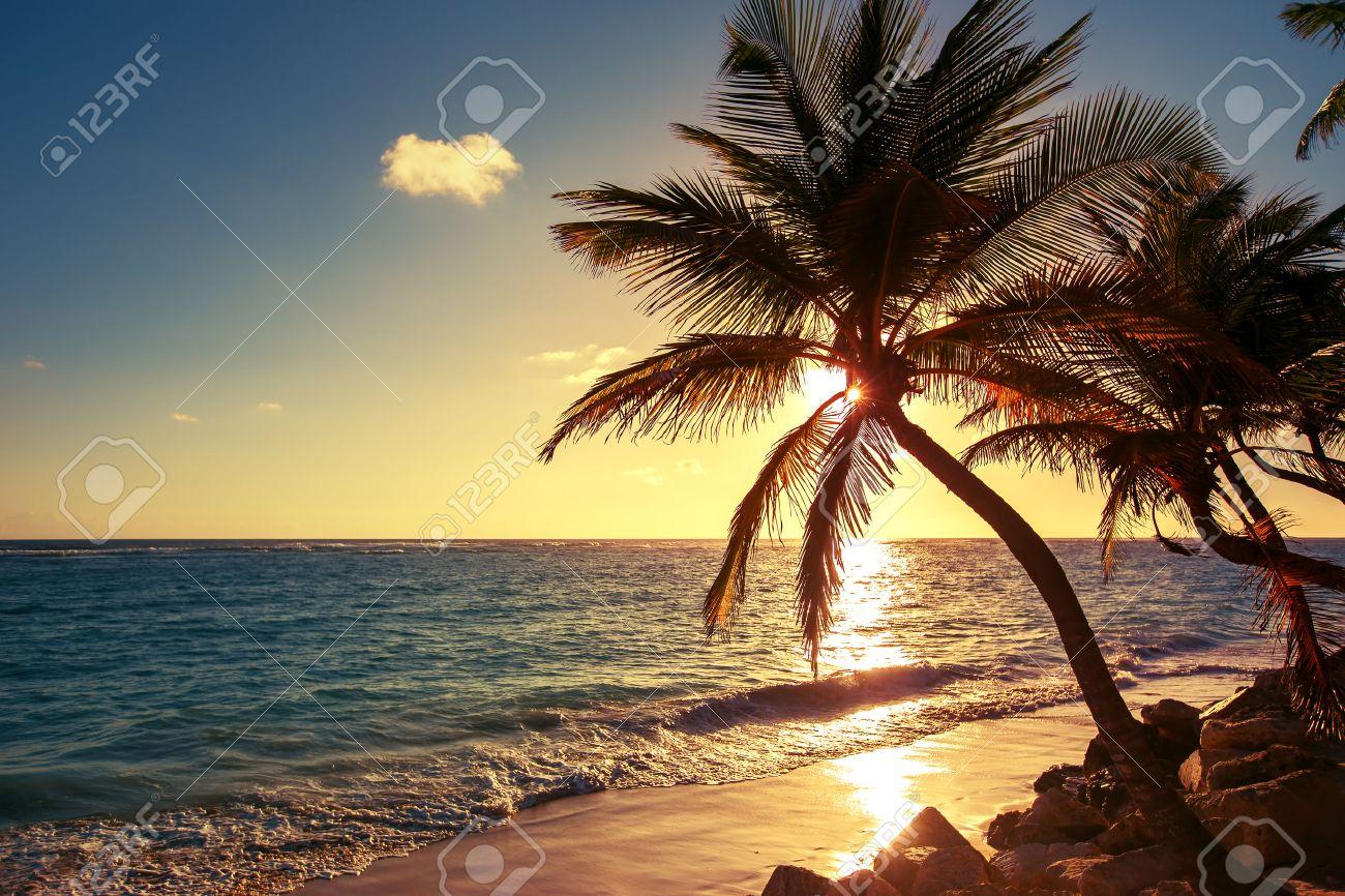 Nett Strandlandschaft Malvorlagen Bilder - Beispielzusammenfassung ...