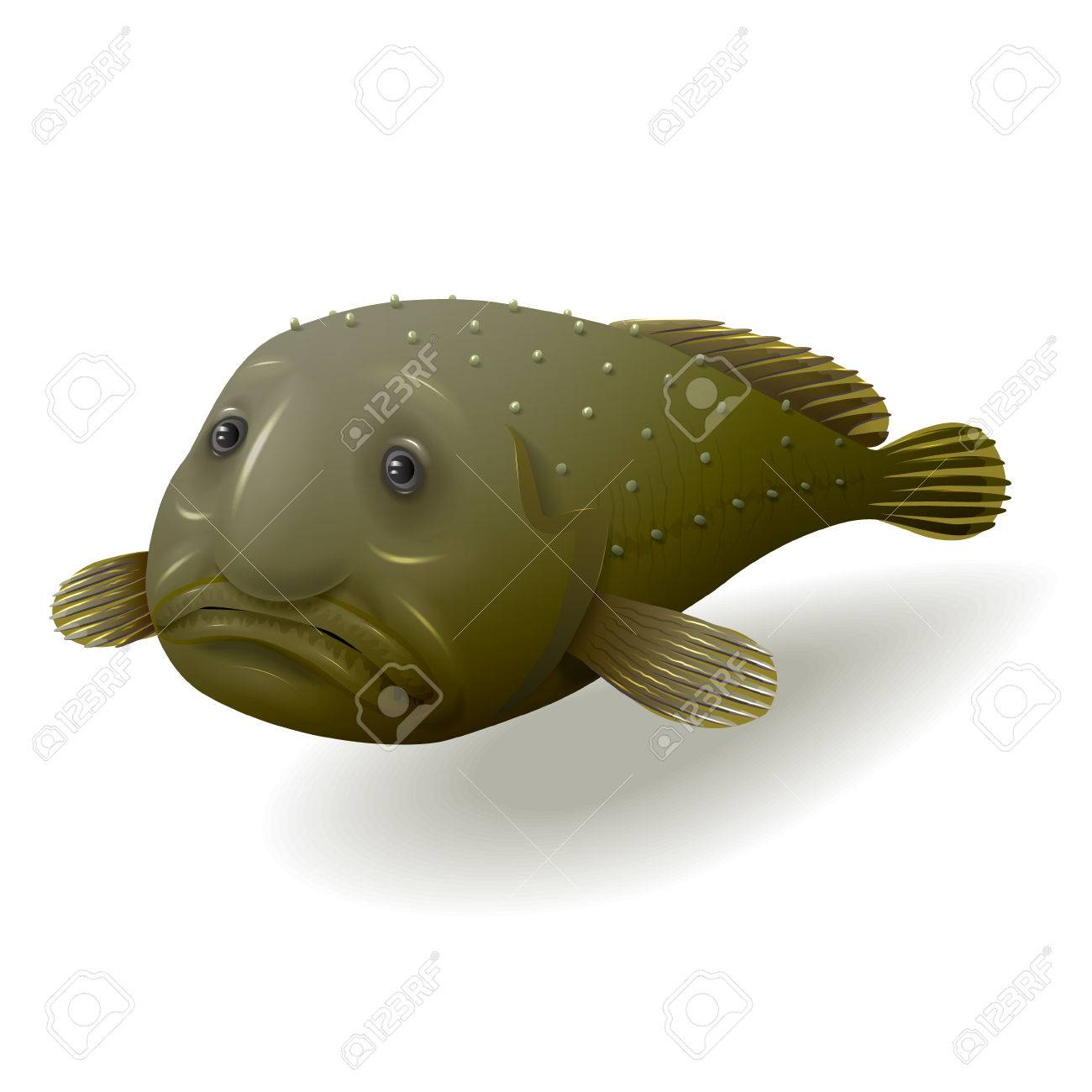 deep water blob fish isolated on white royalty free cliparts