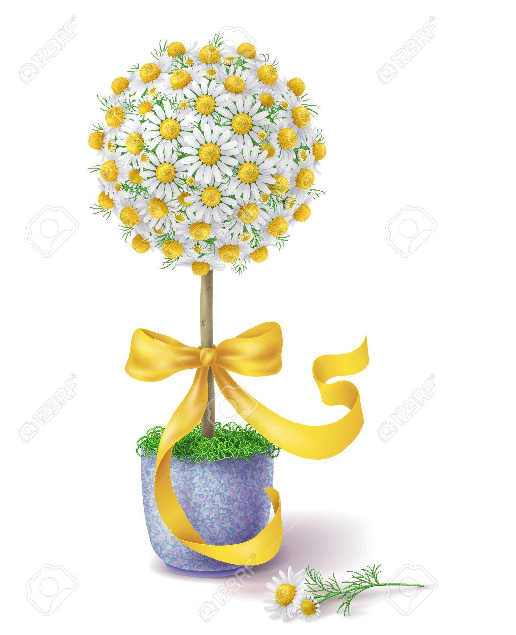Small Handmade Floral Topiary Decorated With Chamomile Flowers Royalty Free Cliparts Vectors And Stock Illustration Image 43825853