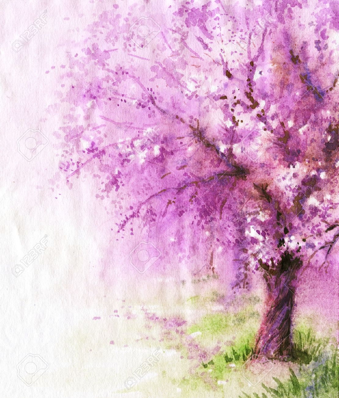 Hand drawn watercolor illustration. Nature landscape. Spring background with pink blossoming sakura tree. - 52662115