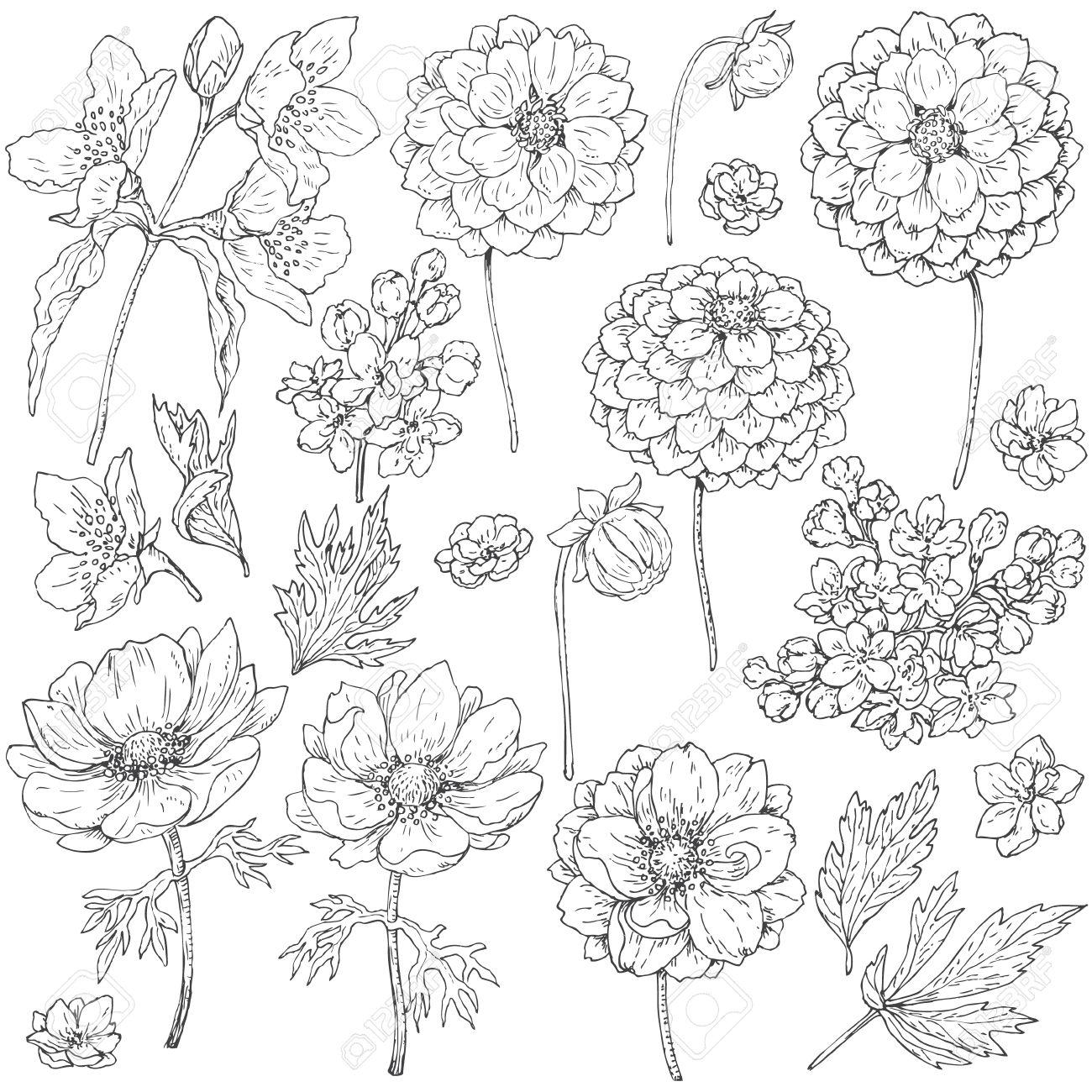 Ausmalbilder Blumenstrauß Geburtstag : Ausgezeichnet Blumen Doodle Malvorlagen Ideen Malvorlagen Von