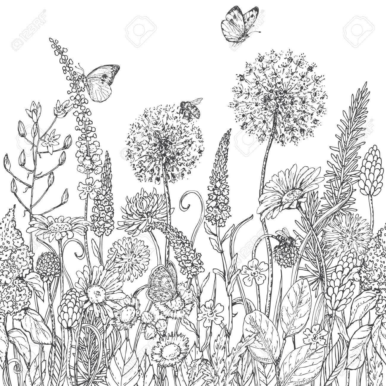 Dibujado A Mano Patrón De Línea Sin Fisuras Con Flores Silvestres E ...