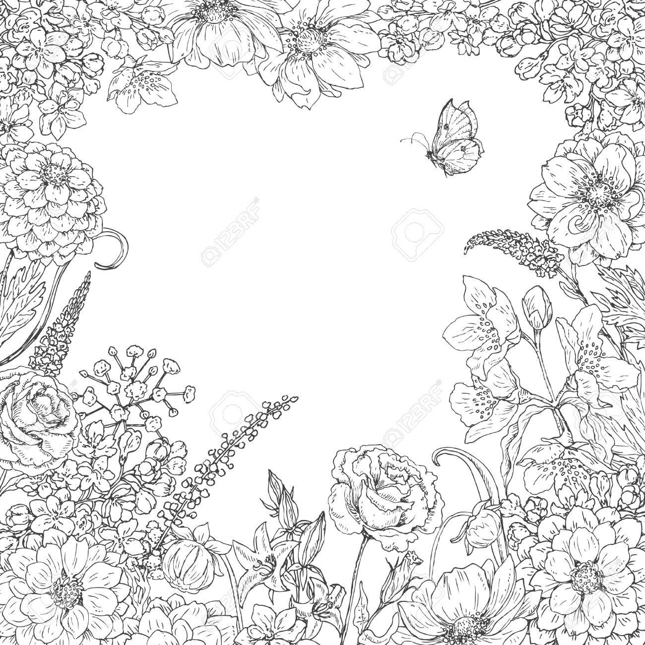 Ziemlich Erweiterte Malvorlagen Schmetterling Fotos - Entry Level ...