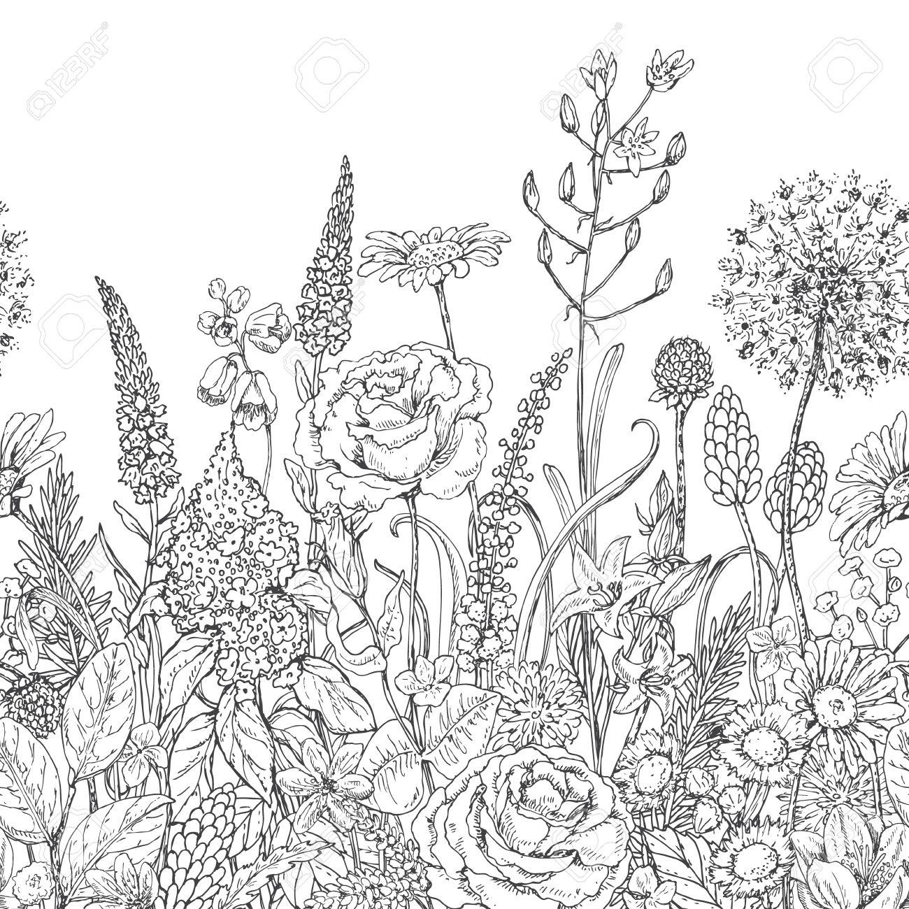 Dibujado A Mano Patrón De Línea Sin Fisuras Con Flores Silvestres ...