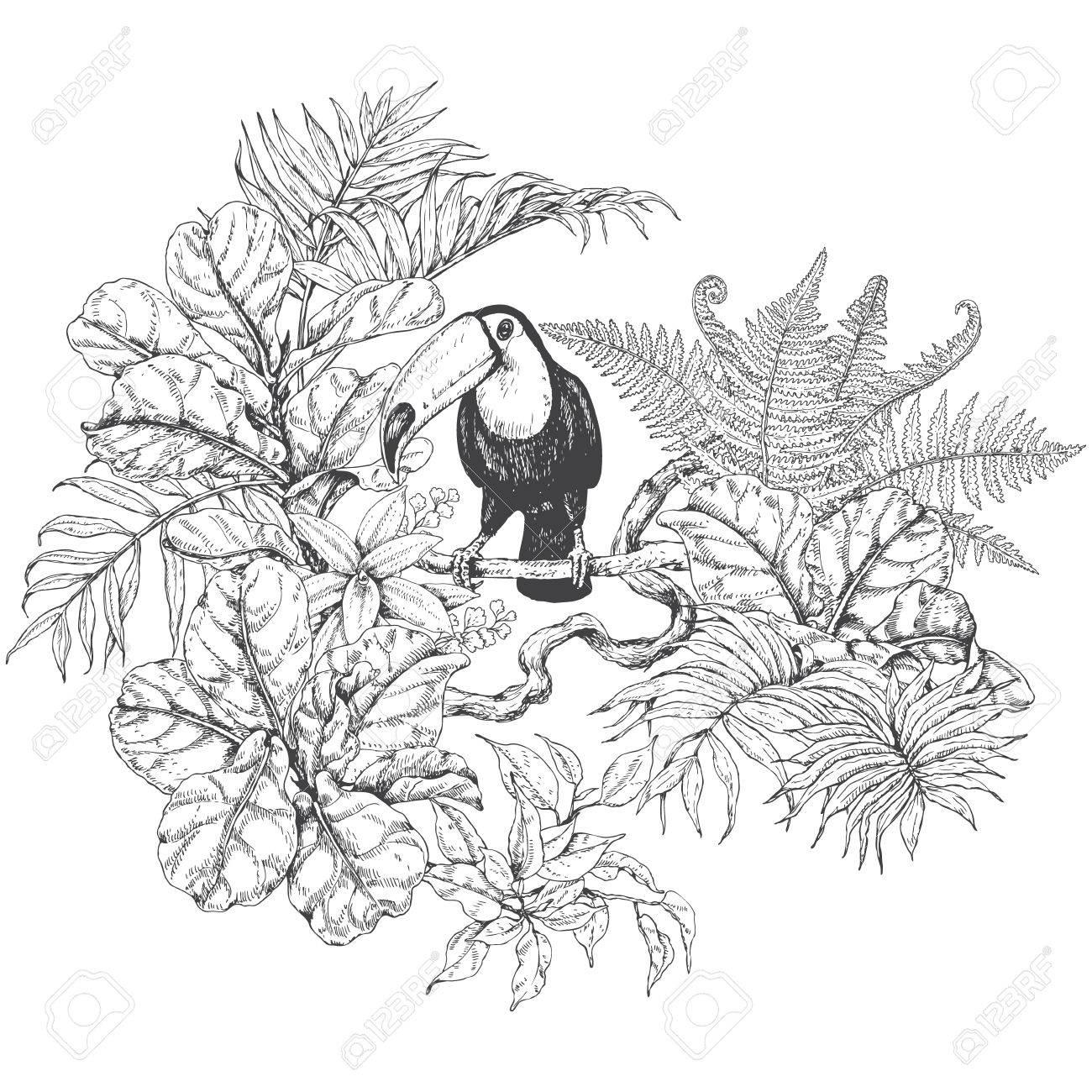 Hand gezeichnete Zweige und Blätter von tropischen Pflanzen. Einfarbige  Blumen Bündel mit Vogel. Toucan sitzt auf Liane Zweig. ...