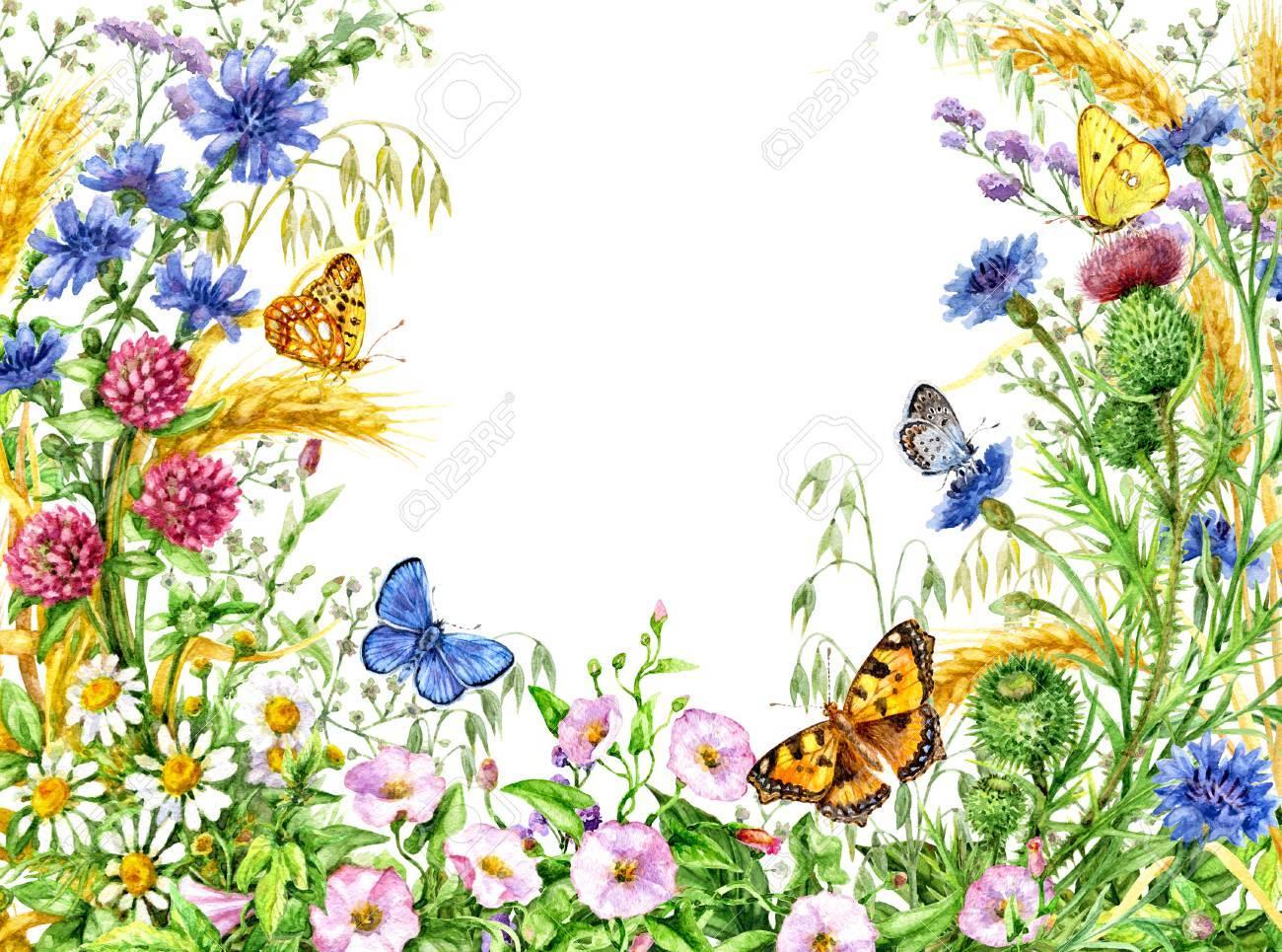 Ilustración Dibujada Mano De La Acuarela. Elementos Florales Para La ...