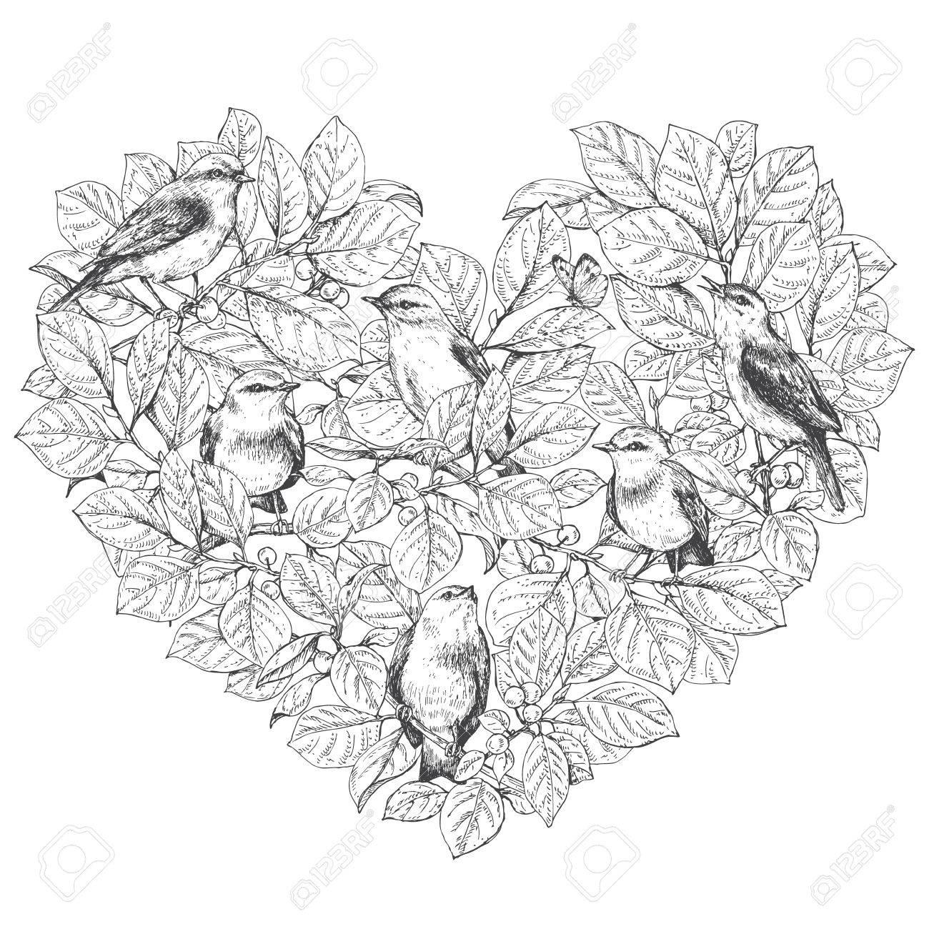Handgezeichnete Doodle Vögel Sitzen Auf Ästen. Monochrome Bevy Von ...