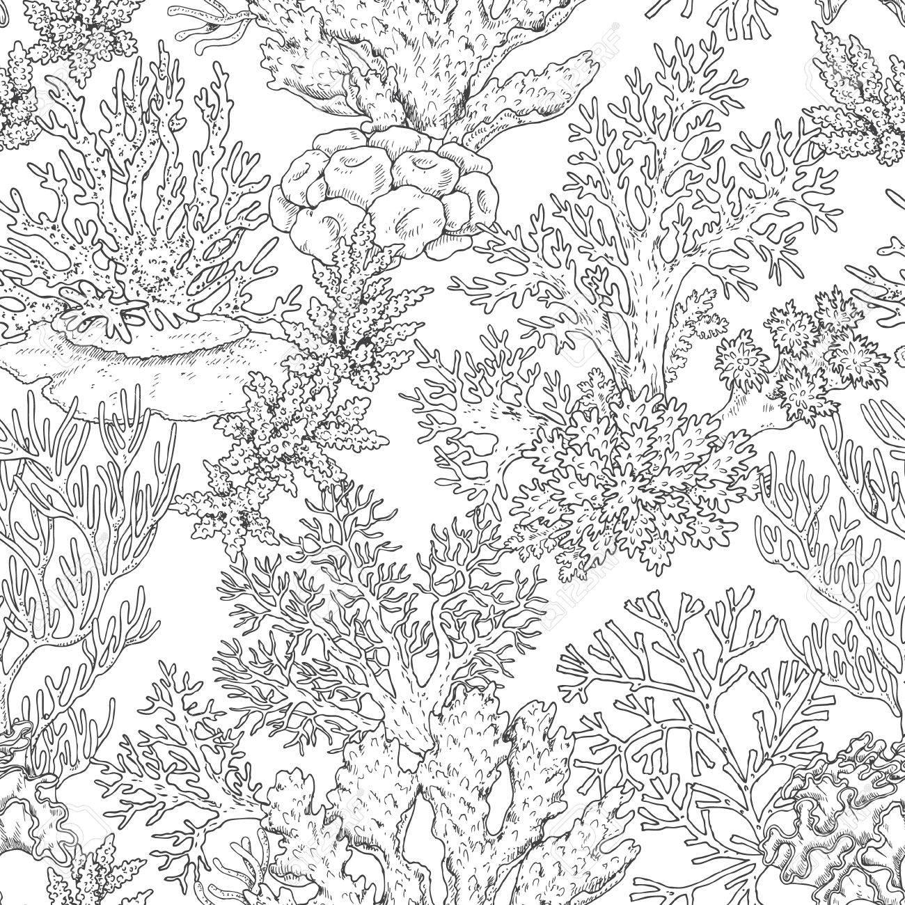 Elementos Naturales Subacuáticos Dibujados A Mano Patrón Sin Fisuras Con Corales De Arrecife Mar Fondo Textura Monocromática Ilustración En