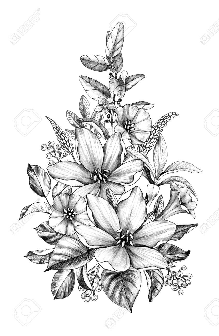 Hand Drawn Floral Bouquet With Various Big And Small Flowers Stock Photo Picture And Royalty Free Image Image 118980188
