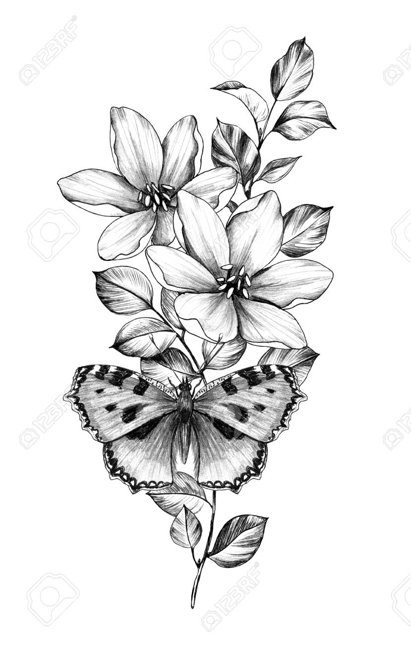 Hand Drawn Butterfly With Flowers Isolated On White Background