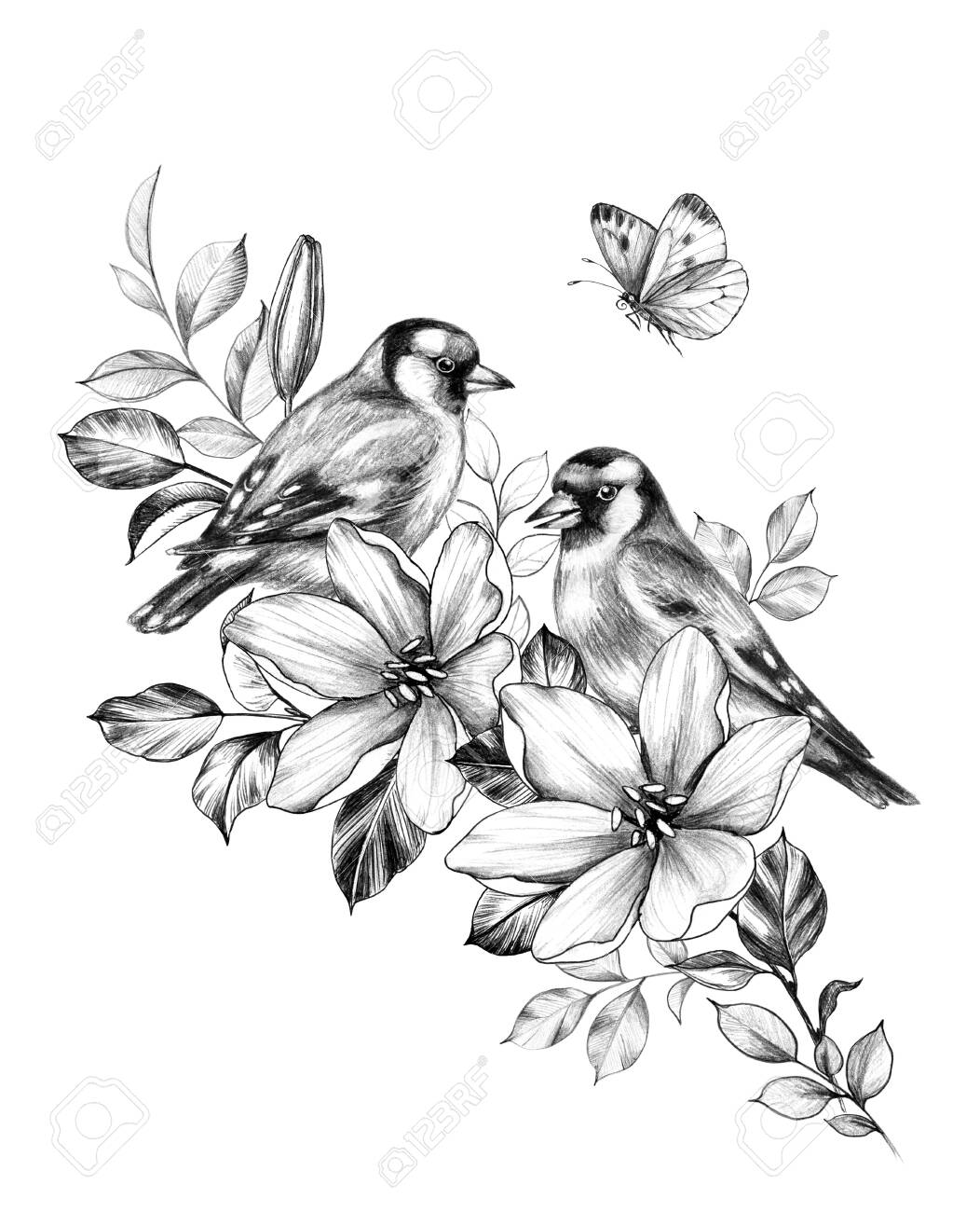 Hand drawn couple goldfinches sitting on branch with flowers