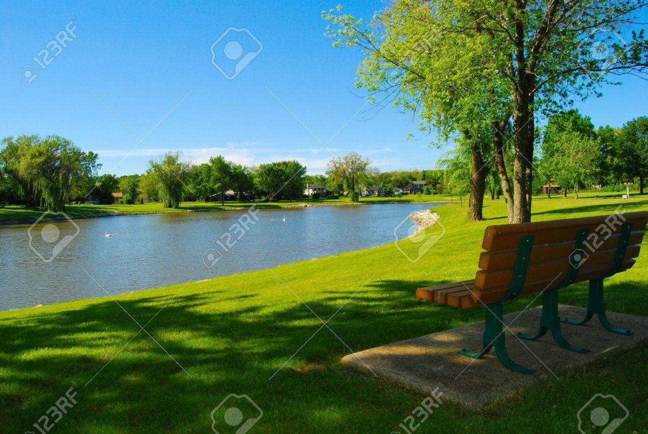 Park bench overlooking a lake - 4988838