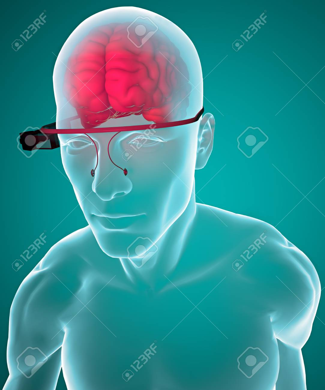 Interactive Glasses And Brain, Anatomy Stock Photo, Picture And ...