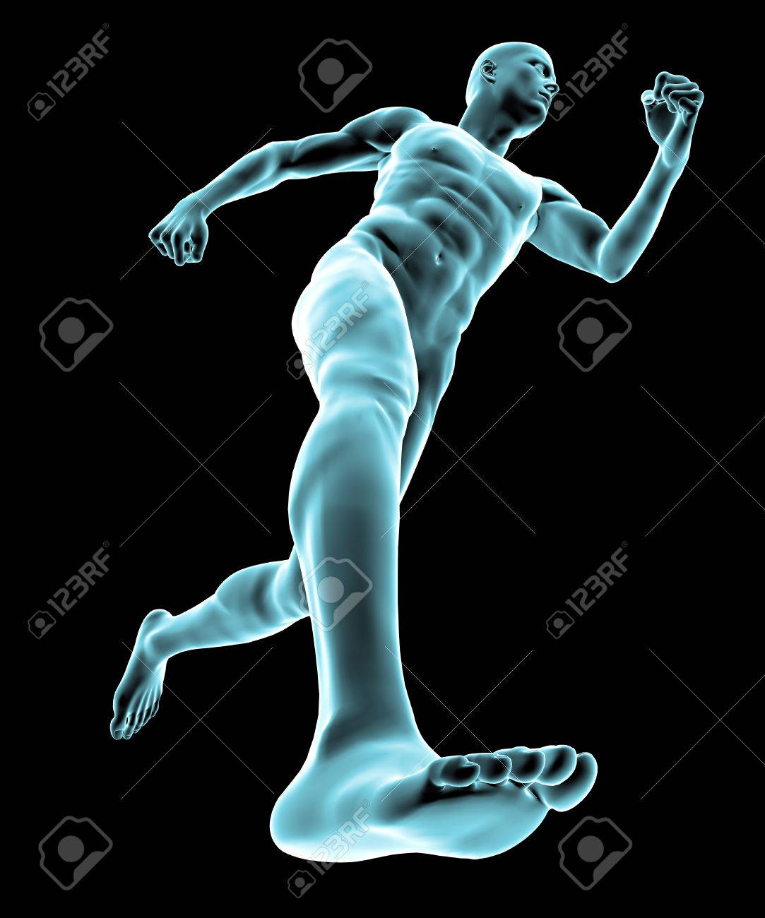 X Ray Of Human Body And Skeleton Feet Stock Photo Picture And
