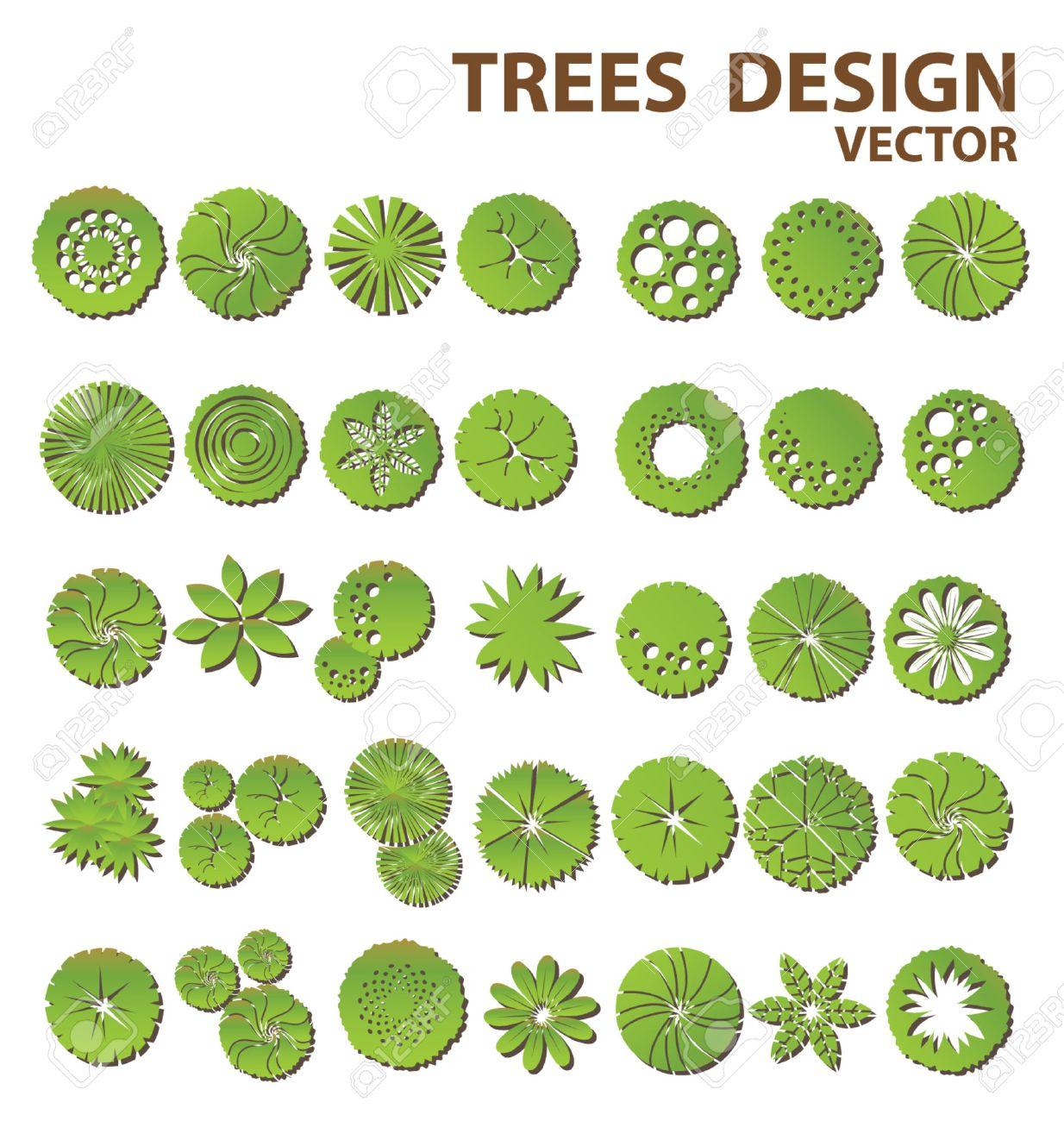 Корел дро в ландшафтном дизайне