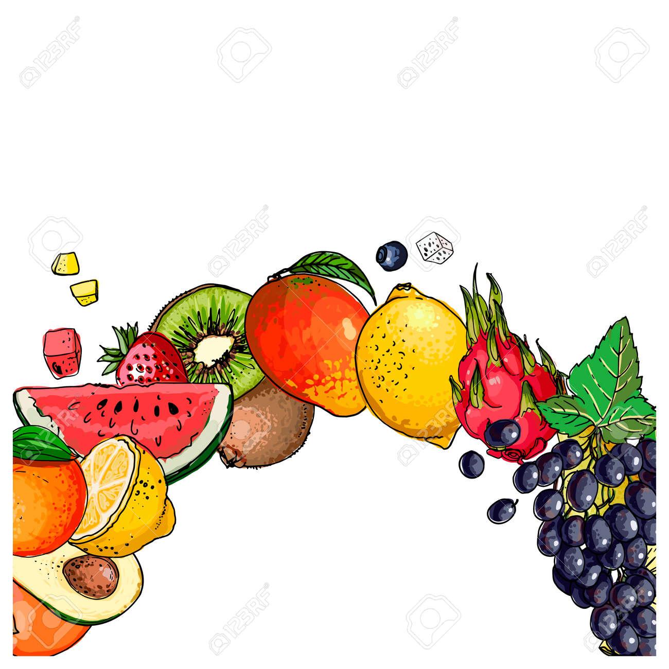 Fresh food. Watermelon, cantaloupe, pomegranate, apricot, persimmon line drawn on a white background. Vector illustration. - 165991008